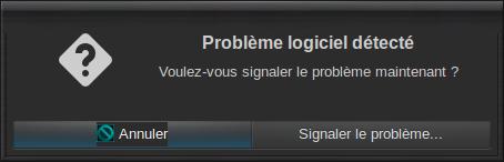 UE5 11 problème logiciel 01.png