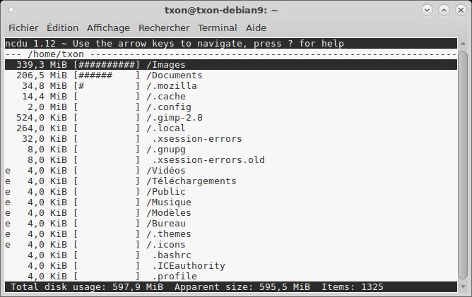 Debian 9 ncdu II.png