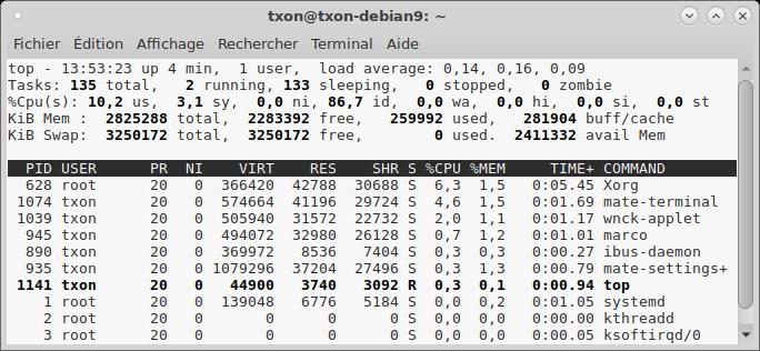 Debian 9 top II.png