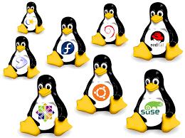 Linux logo 02.png